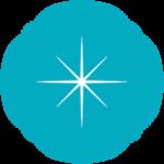 A blue star decoration.