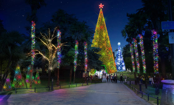 A mock up of large illuminated Christmas Trees in Bournemouth's Lower Gardens.