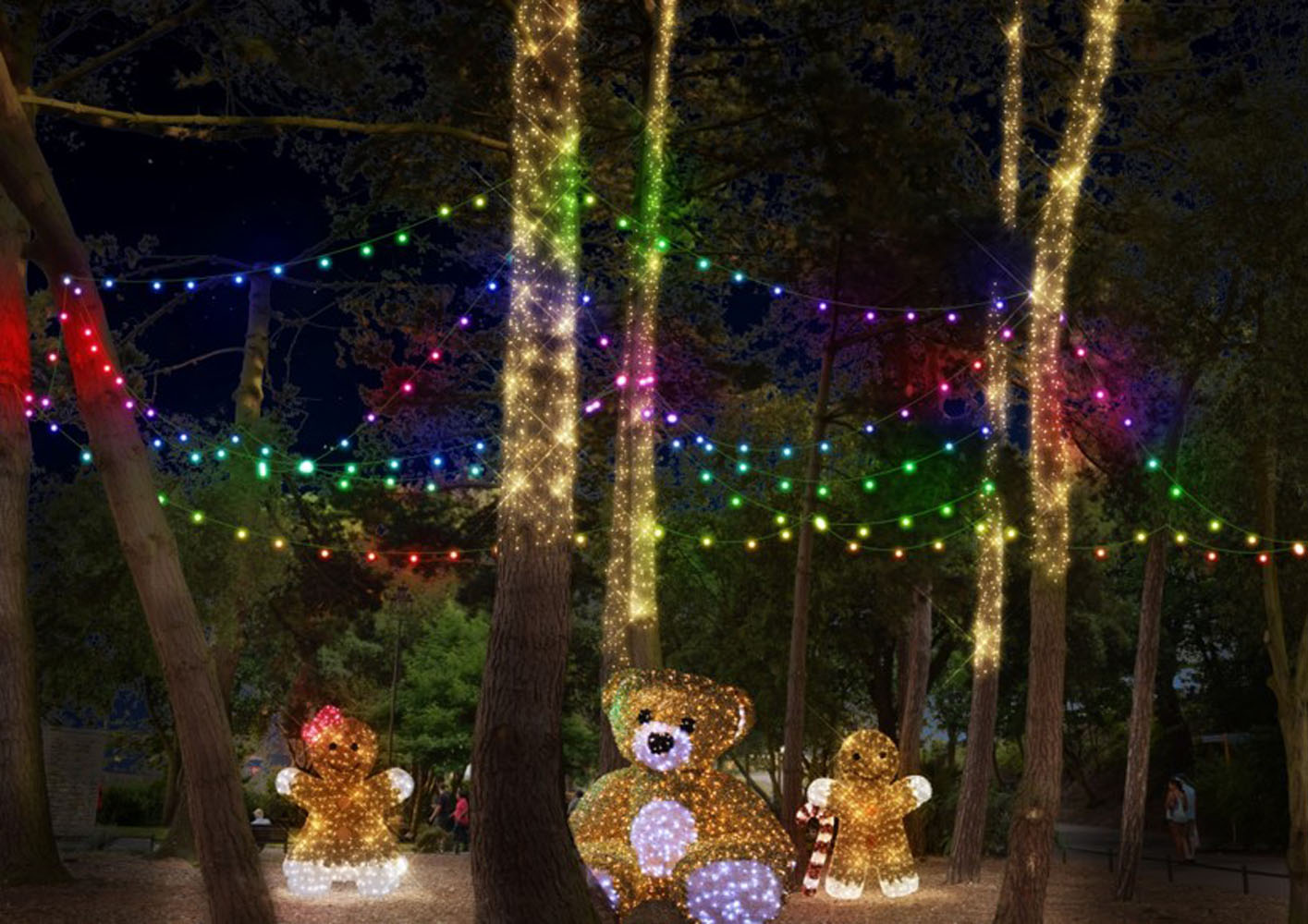Illuminated teddys in amongst trees as part of Bourenmouth's Christmas Tree Wonderland.