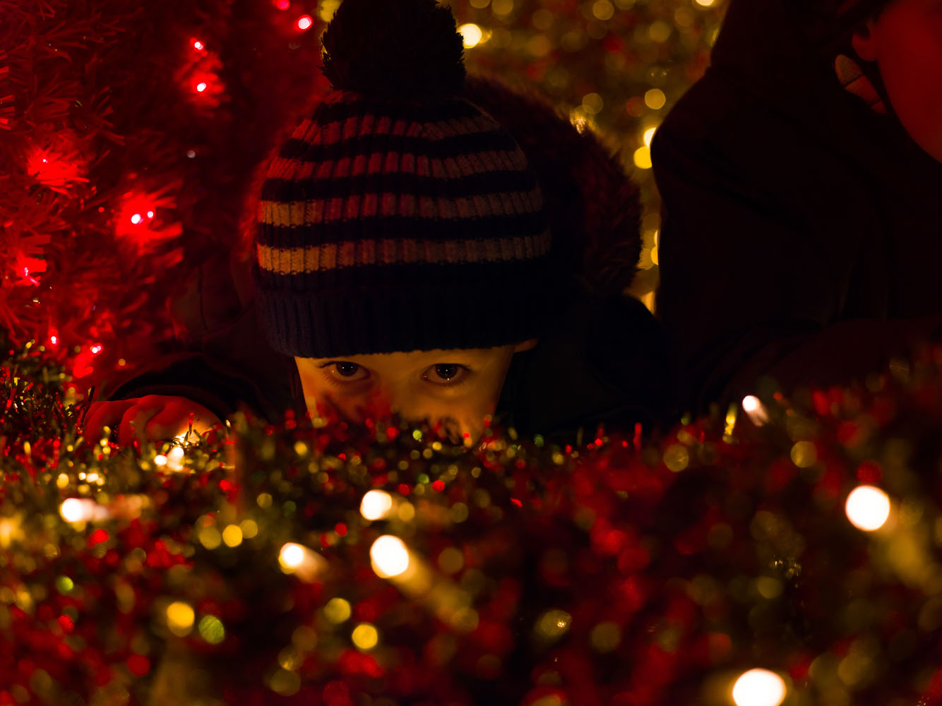A child peaks out among Christmas Decorations.