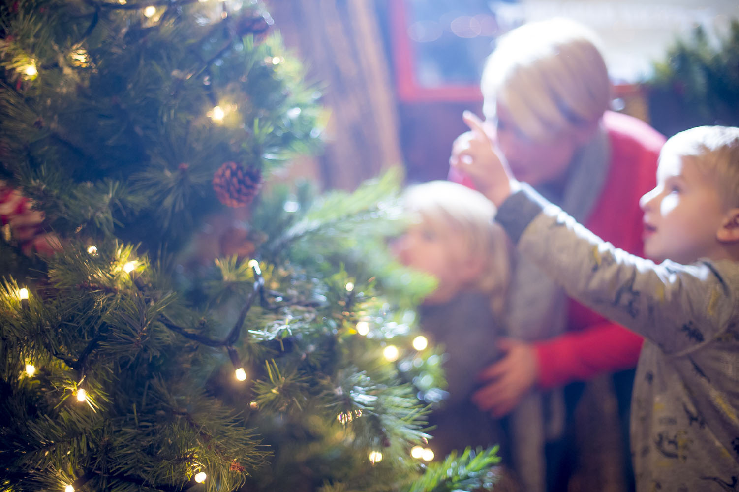 A mother and children look at an illuminated Christmas Tree.