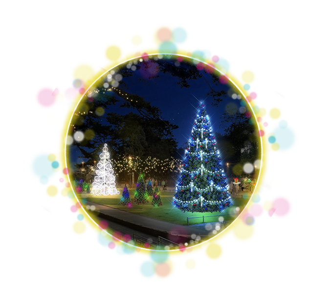 A mock up of Christmas Trees in Bournemouth's Lower Gardens.
