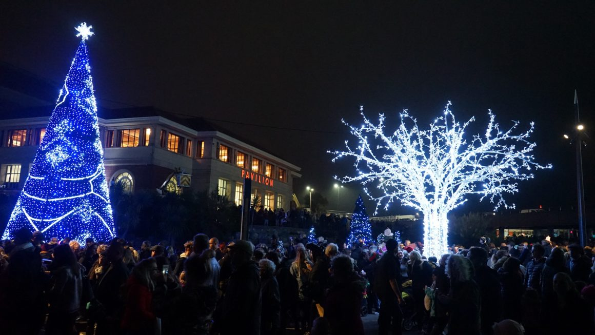 Bournemouth's brand new Christmas Tree Wonderland is finally here!