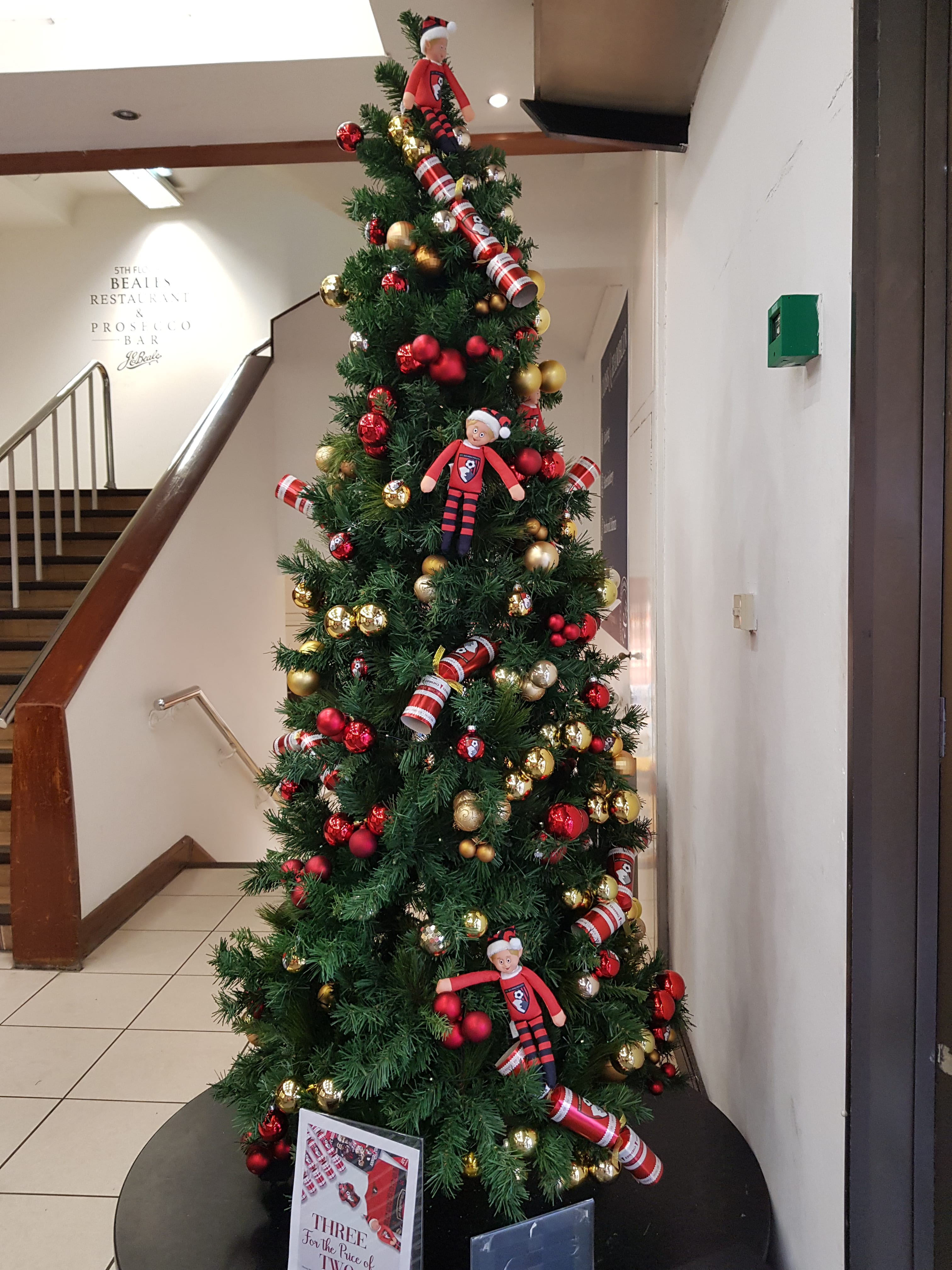 AFC Bournemouths Christmas Tree in Beales