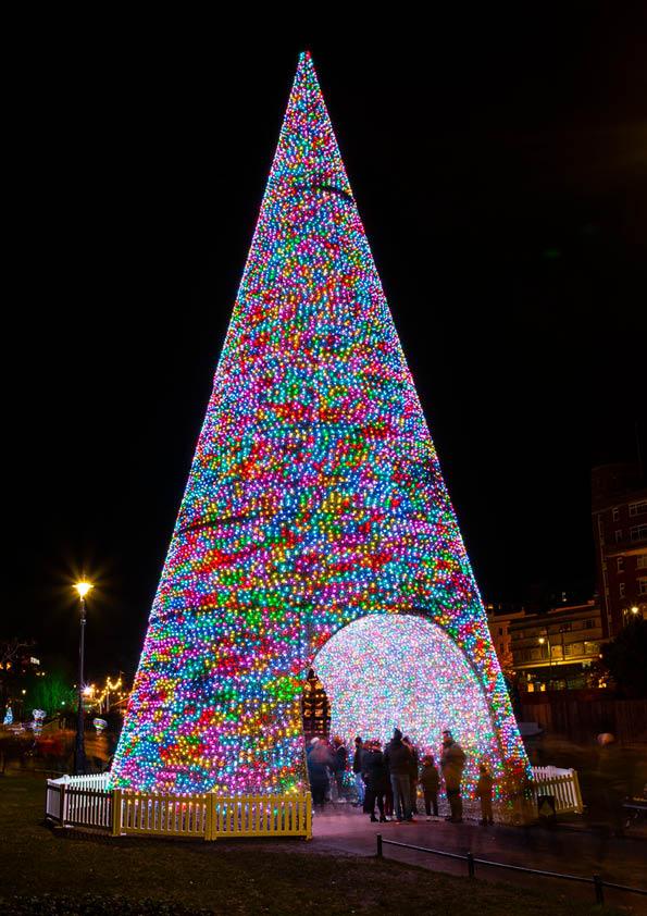 Christmas Tree Wonderland Bournemouth Coastal Bid.About Us Christmas Tree Wonderland Bournemouth