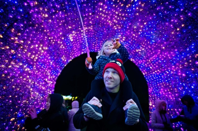 Child on Parents shoulders walking under the bright lights of the Feature Xmas Tree
