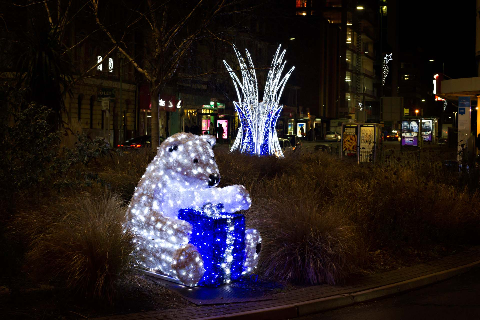 Polar Bear and Christmas lights in Bournemouth