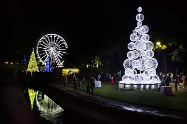 Seattle Tree with the Bournemouth's wheel in the background