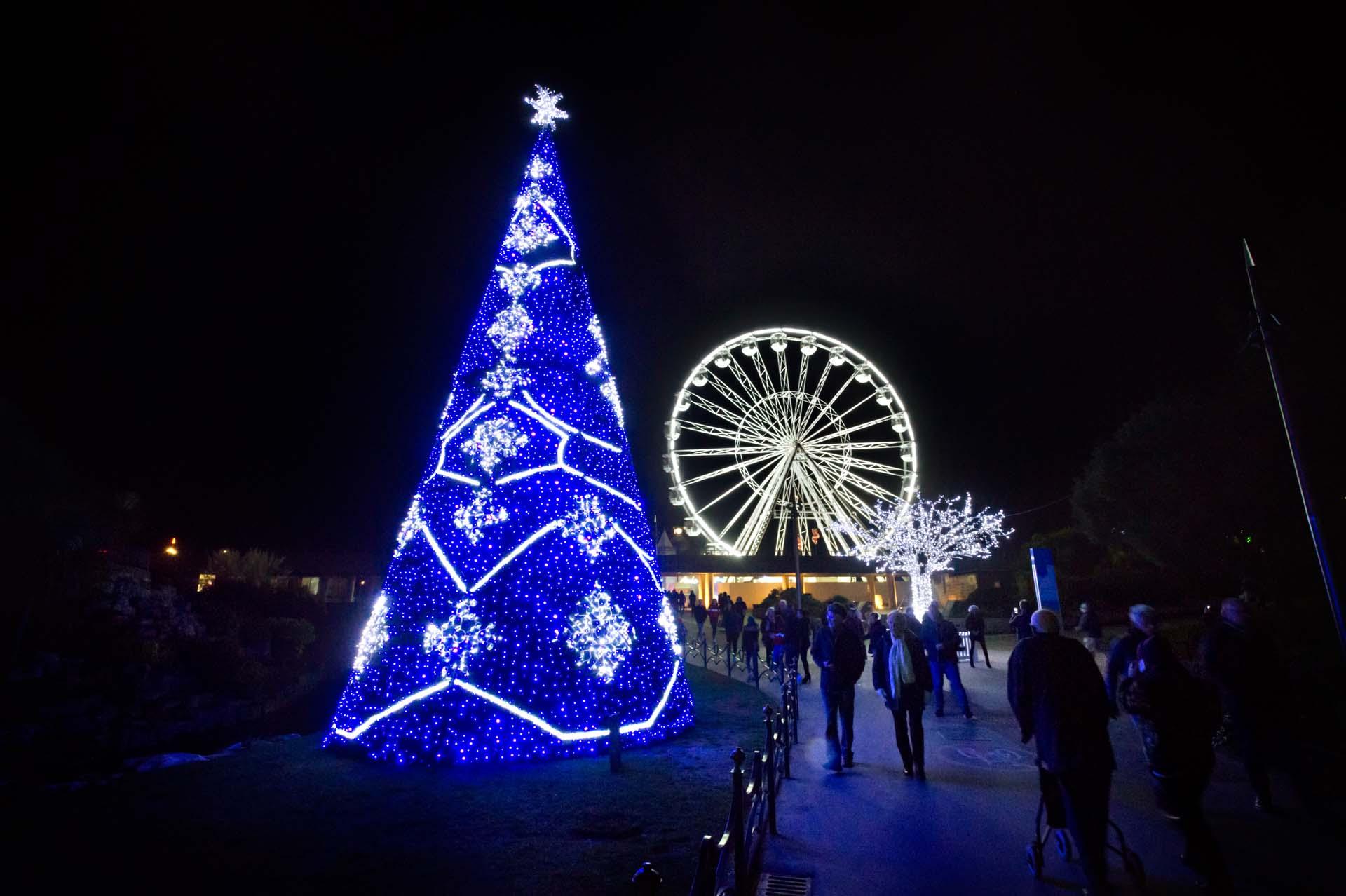 Christmas Tree and Big Wheel lit up for Christmas