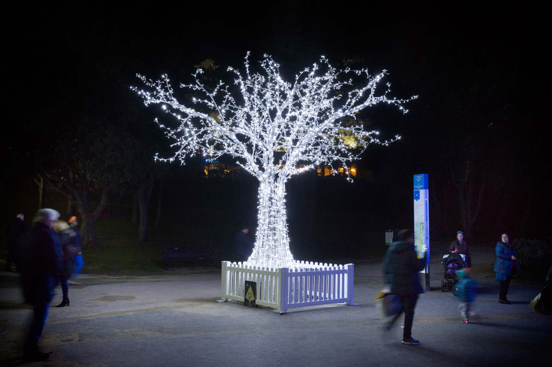 Tree of light with people walking past