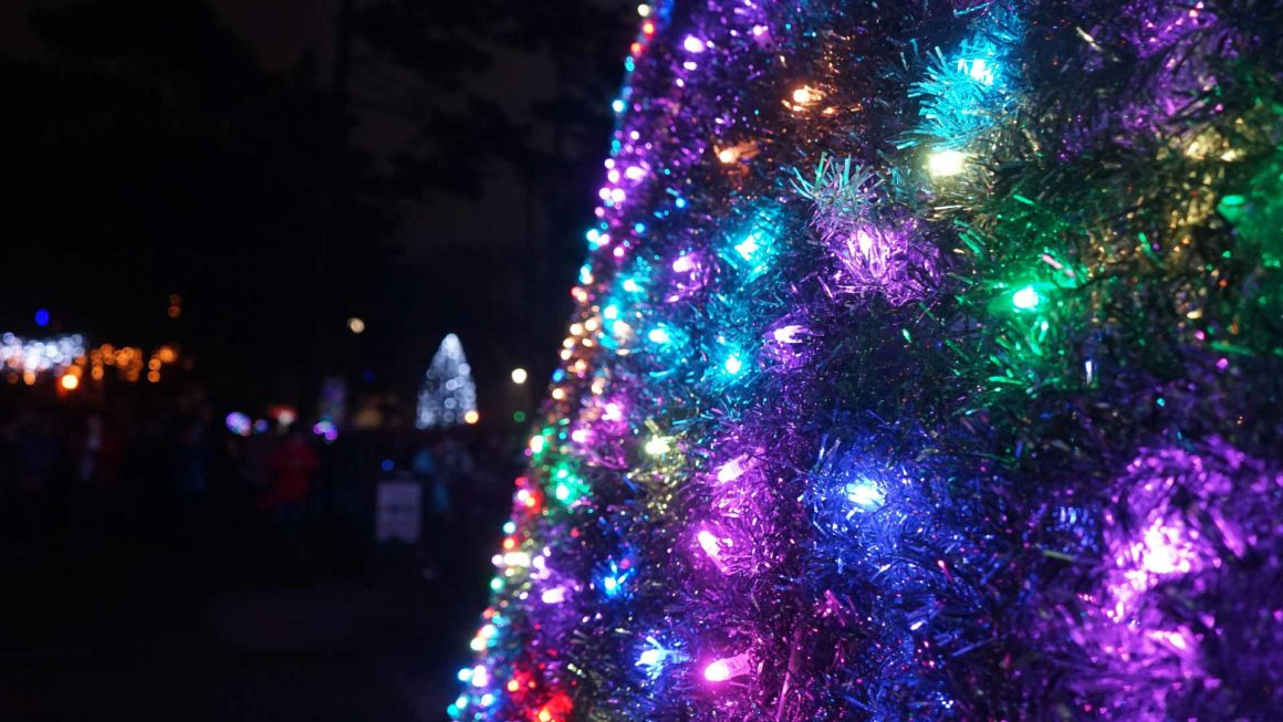 A colourful array of lights on a Christmas tree in Bournemouth